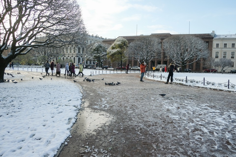 12 декабря в Петербурге ожидается мокрый снег.