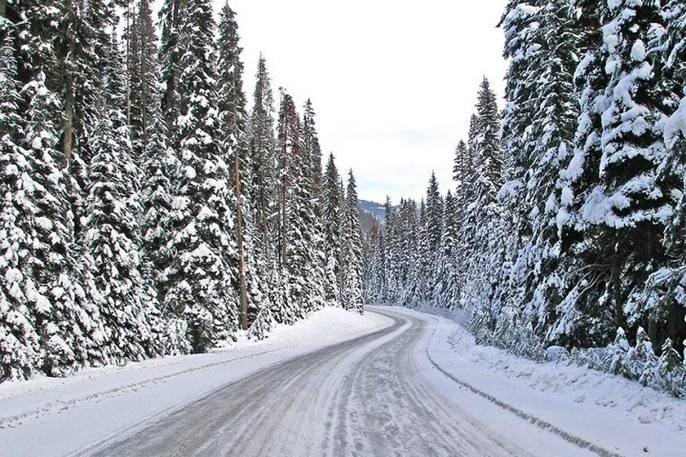Погода в Югре 4 января 2020 года: сильный ветер и снегопад. Фото с сайта МЧС по ХМАО-Югре