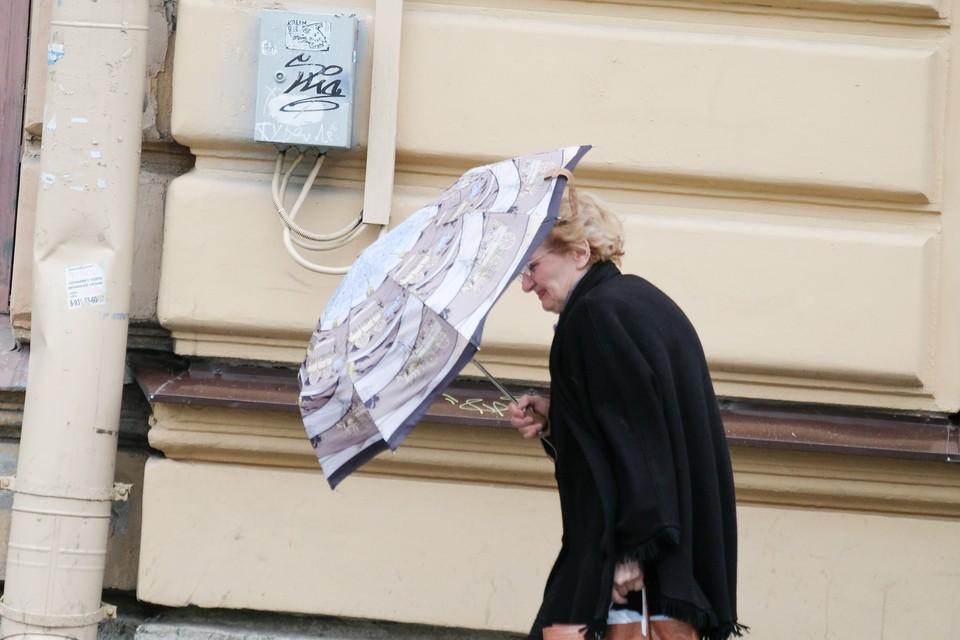 В Ленобласти и Петербурге ожидается сильный ветер 8 января.