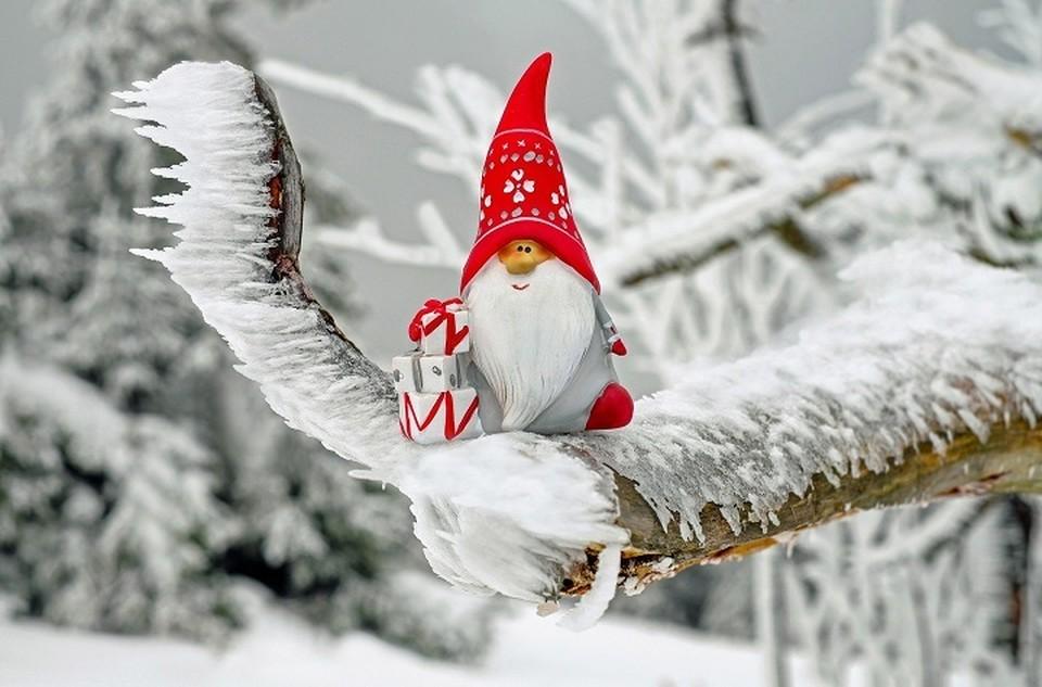 Погода в Югре 14 января: вновь небольшое потепление