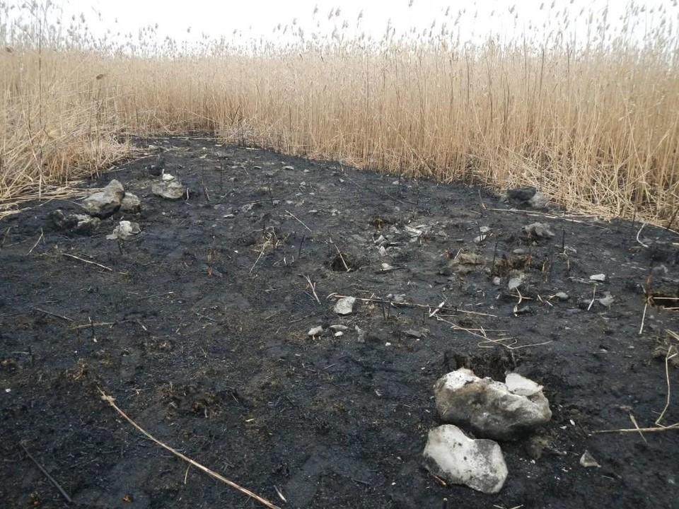 Рисунок вырезан в грунте в виде борозд и выложен камнями. Фото Астраханского РГО.