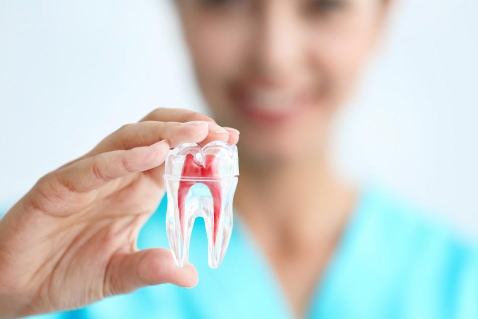 Вместо протезов дантисты будут выращивать у пациентов новые зубы