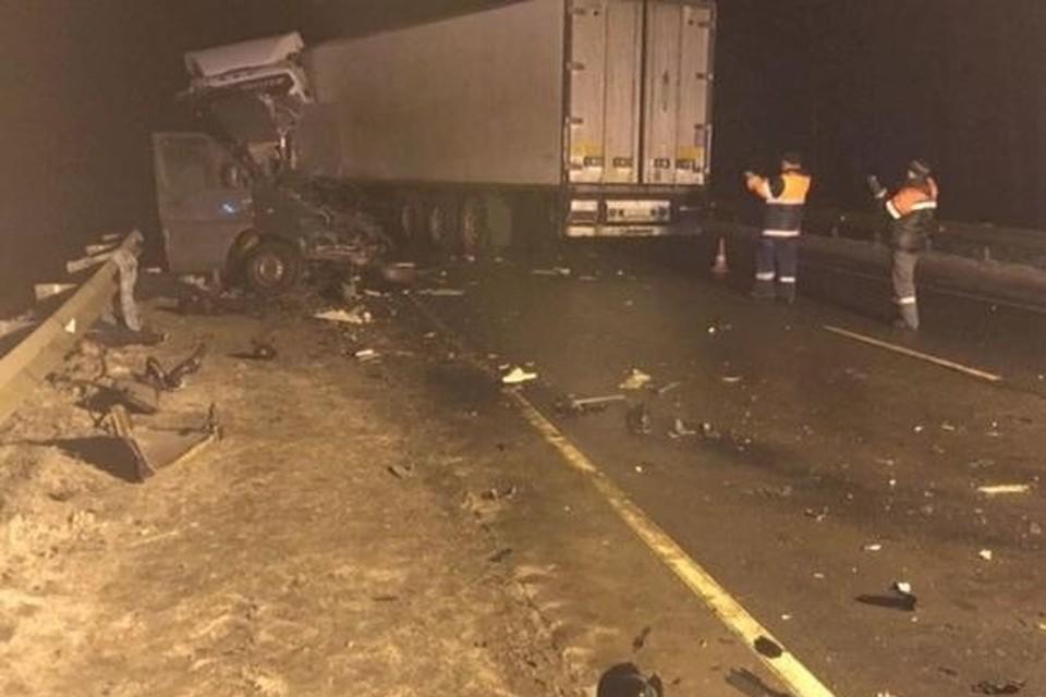 В ДТП под Псковом погибли 8 человек. Фото: gtrkpskov.ru