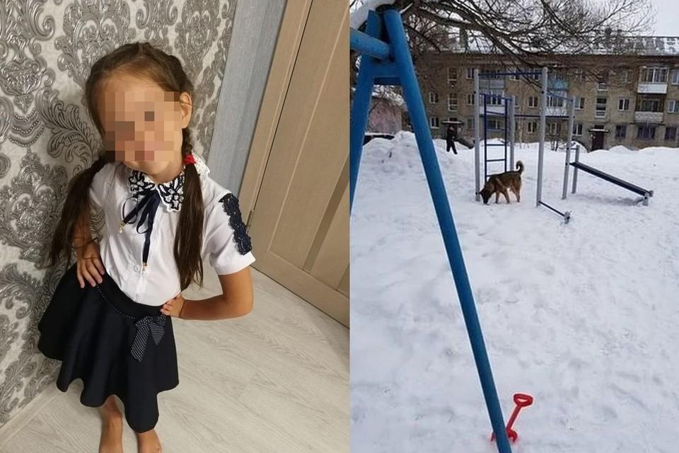 На 7-летнюю девочку напала бродячая собака. Фото: личный архив.