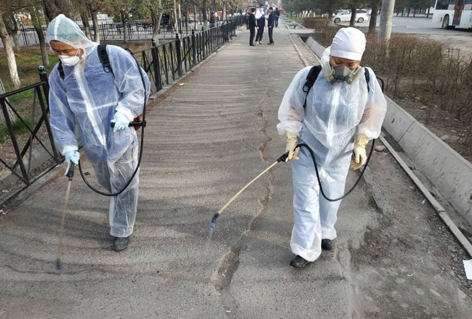 Эпидемиологи будут проводить дезинфекцию по всей стране.