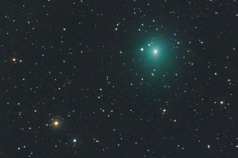 Видимые размеры кометы увеличиваются столь же стремительно, как и число зараженных коронавирусом.