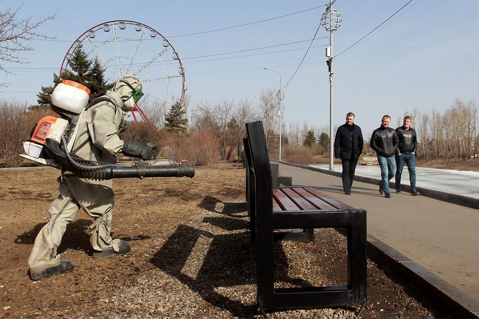 Дезинфекция в парке Иркутска.