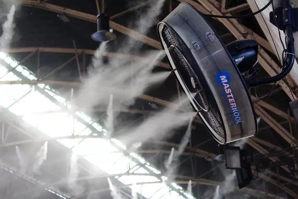 Врач-пульмонолог рассказал, какой уровень влажности в помещениях лучше всего для наших легких