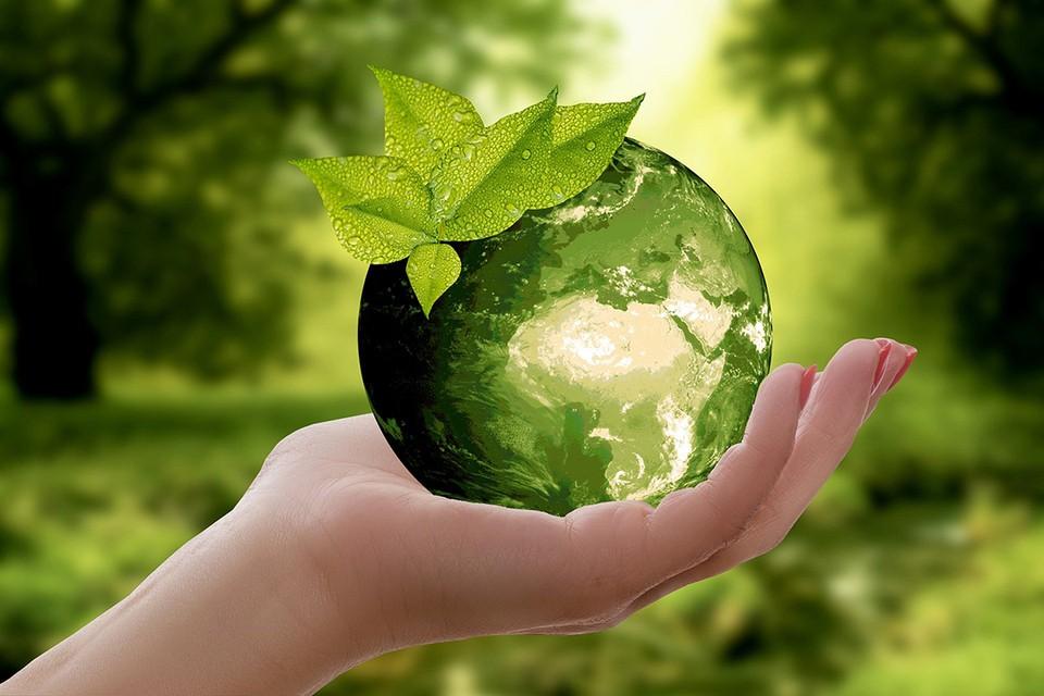 Достаточно соблюдать простые советы, чтобы уменьшить вред, наносимый природе. Фото: pixabay.com