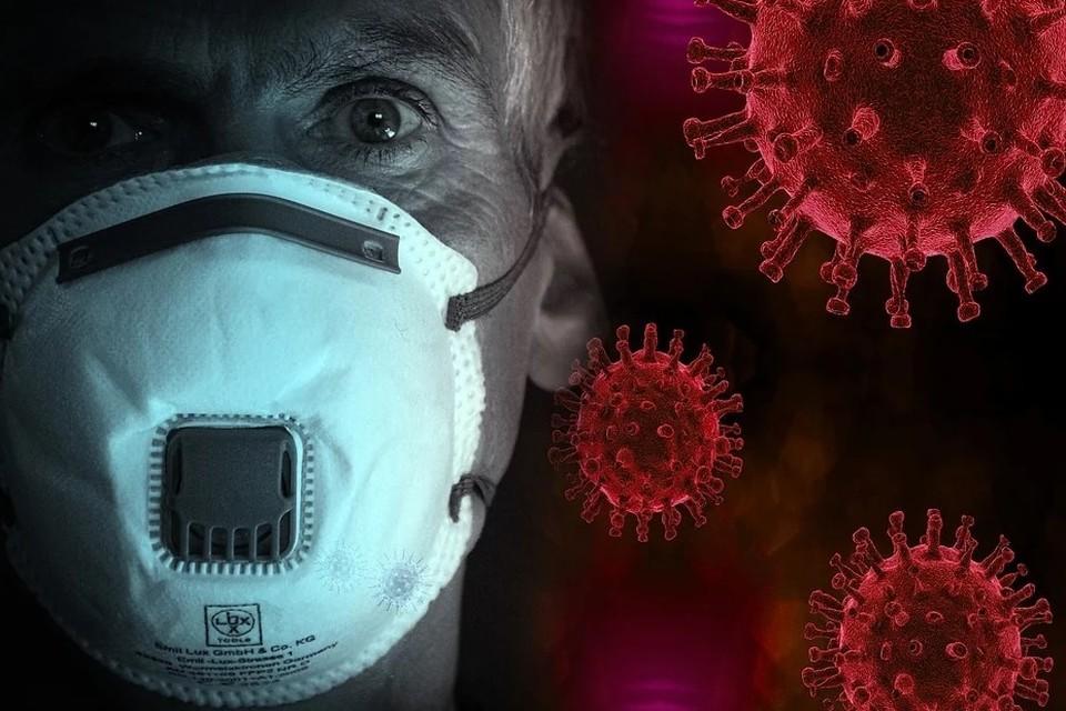 Коронавирус в Барнауле: последние новости на 21 апреля 2020 года, в регионе 41 новый заболевший