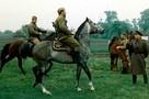 «Моего коня зовут Ленфильм»: Игорь Скляр рассказал о любимом скакуне