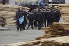 Ситуация с коронавирусом в Мурманске: У пяти осужденных в колонии в Ревде подозревают коронавирус