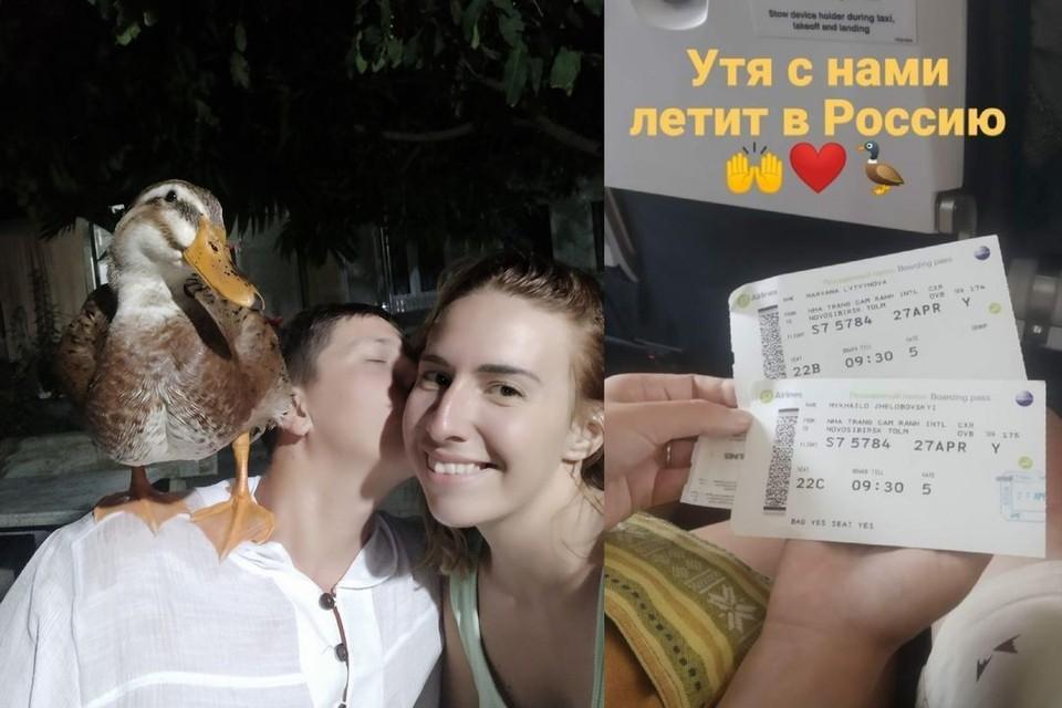 Борю туристы смогли вывезти в Россию, но в аэропортку птицу у хозяев забрали. Фото: личный архив.