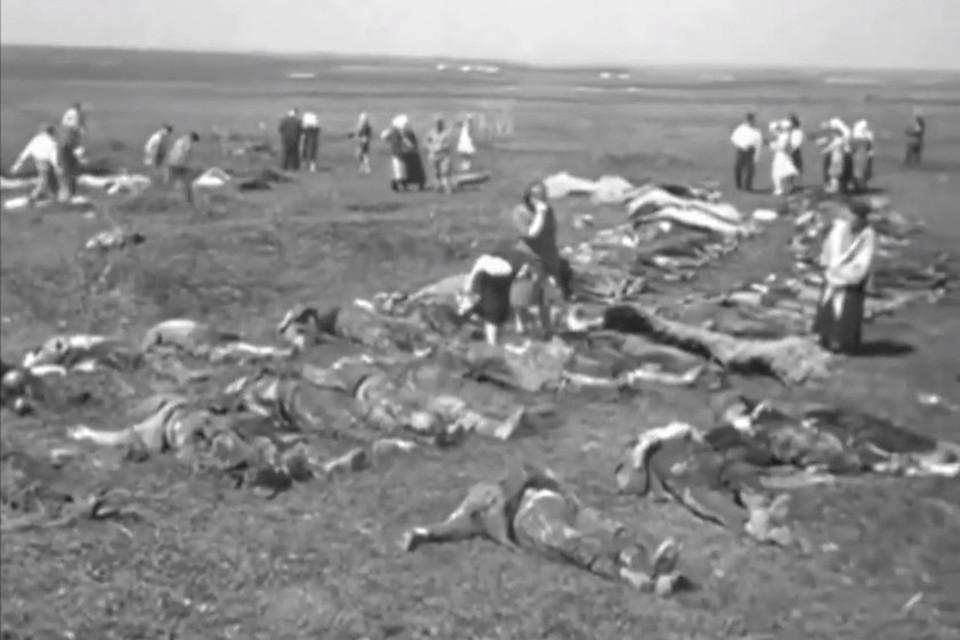 Эксгумация тел погибших в концлагере «Красный». Скриншот видео документальной хроники