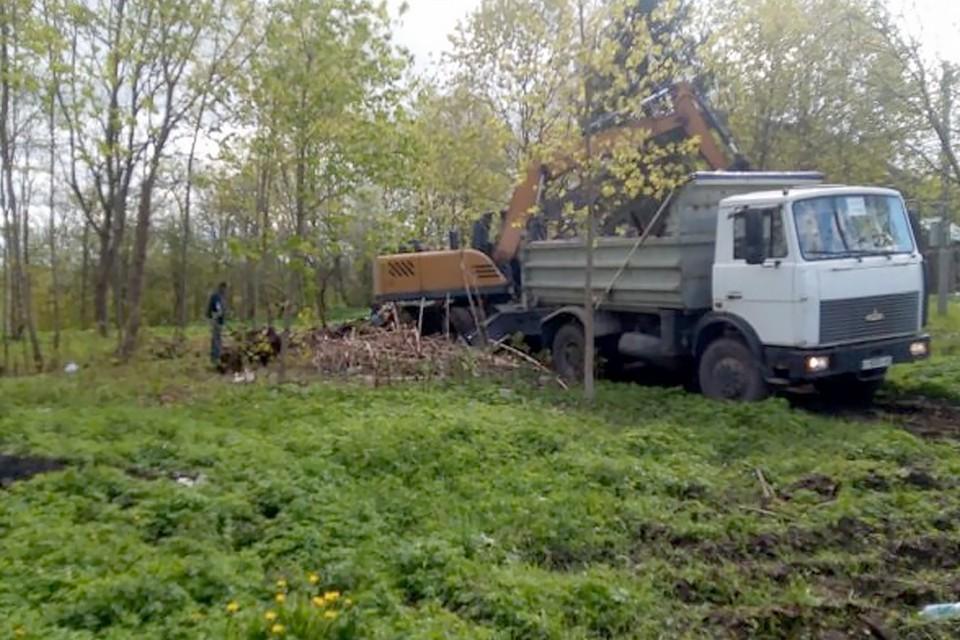 Работы по благоустройству Щиглицкого парка в Псковском районе начались еще в прошлом году.
