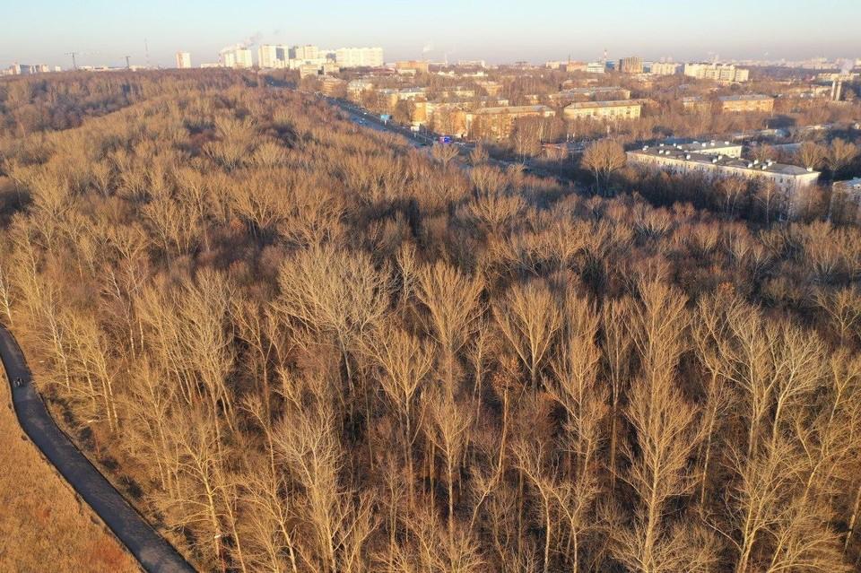 В Нижнем Новгороде ищут подрядчика для благоустройства парка «Швейцария».