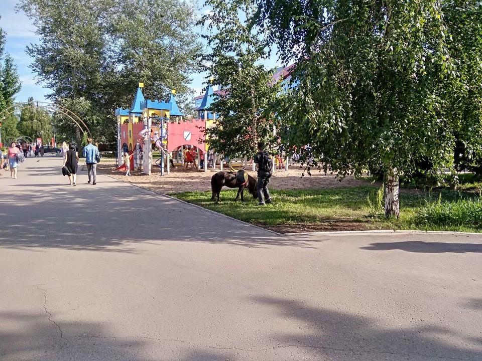 В Саратовской области на выходных будет немного прохладнее