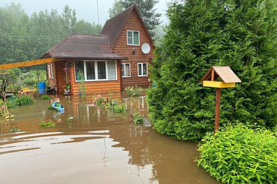 В Московской области не стихает буря. Фото: Евгений Тишковец
