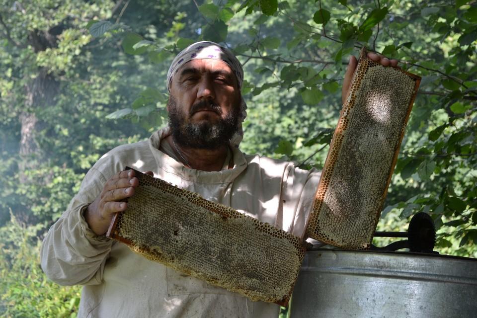Пчелы для Михаила Зубкова и его семьи стали делом всей жизни. Автор фото: АО «Россельхозбанк»
