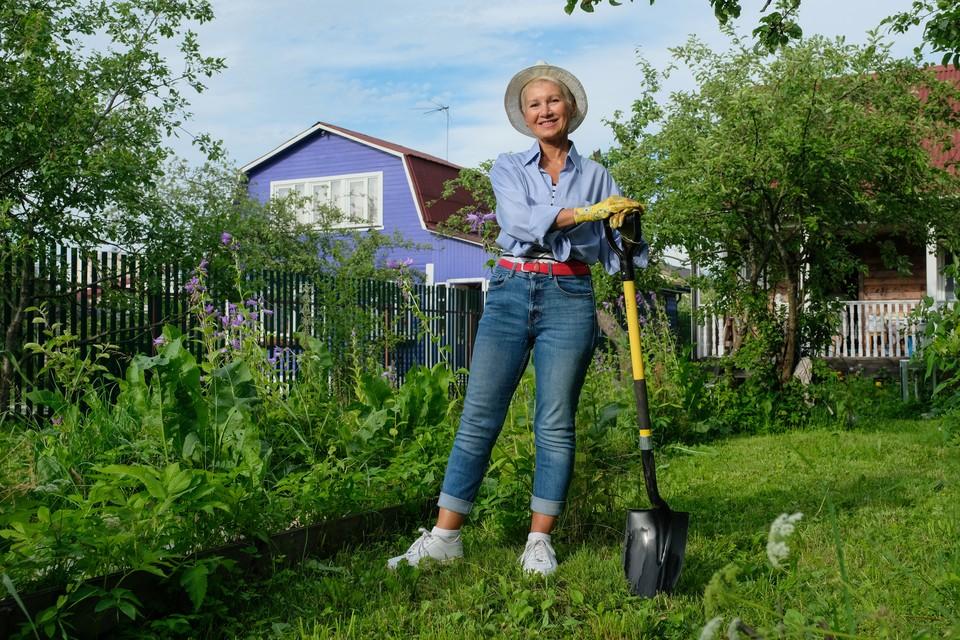 Депутаты предлагают продлить дачную амнистию для домов на садовых участках до 1 марта 2026 года.