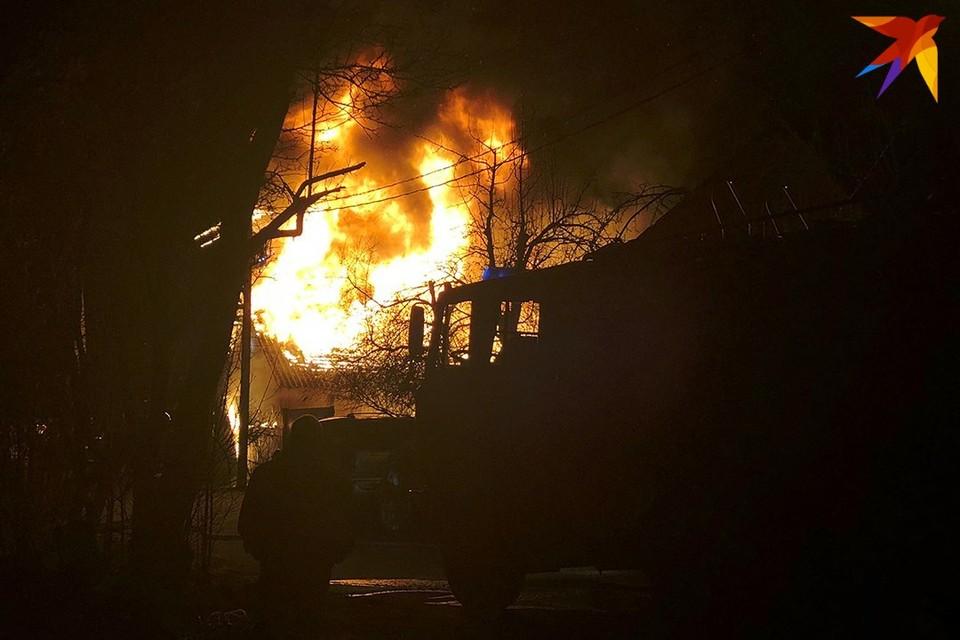 В Осиповичском районе при пожаре на ферме погибли 19 телят