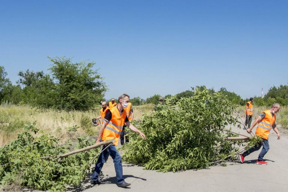 Сотрудники строительных организаций занимались расчисткой лесонасаждений. Фото: lug-info.com