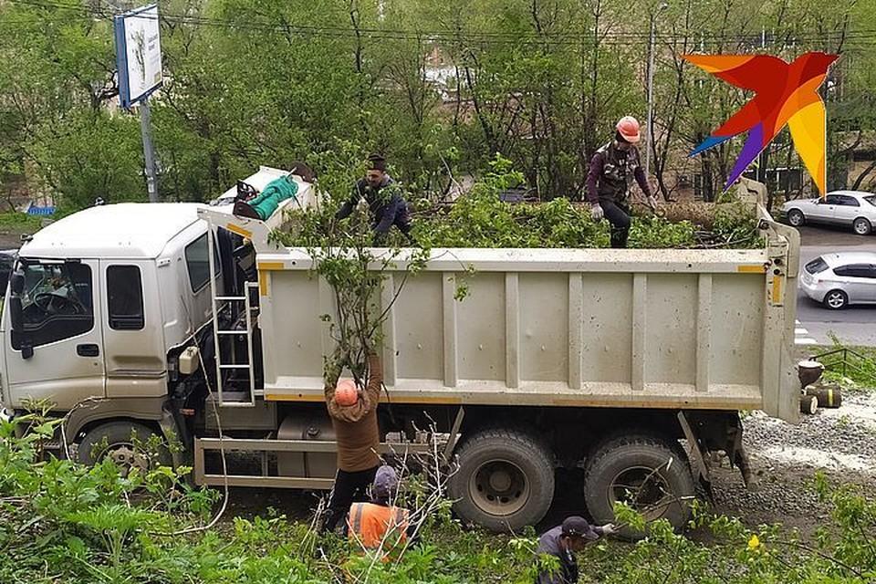 Мэрия отменила разрешение на скандальную стройку на проспекте Красного Знамени во Владивостоке