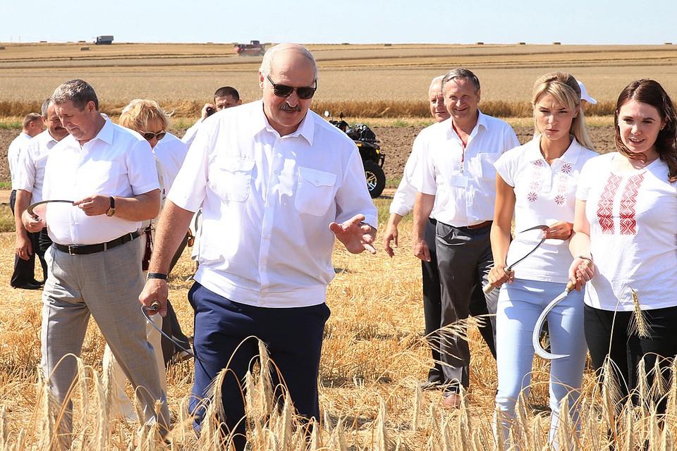 В сельском хозяйстве Лукашенко добился просто чудес