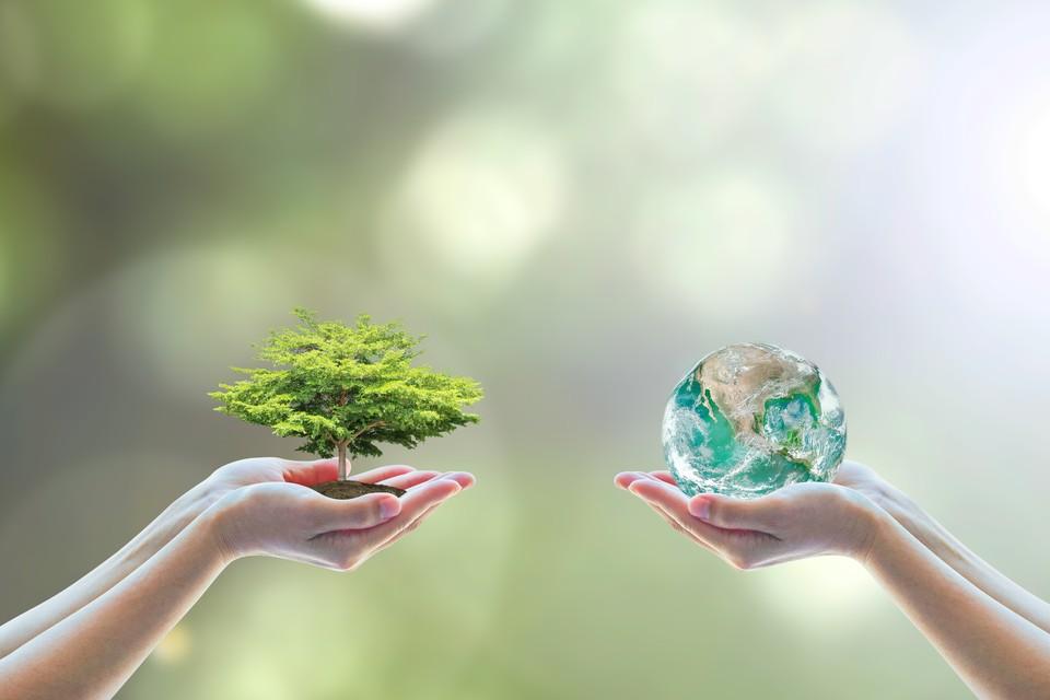 «Экозабота» призвана привлечь самых юных членов общества к защите окружающей среды. Фото: shutterstock.com.
