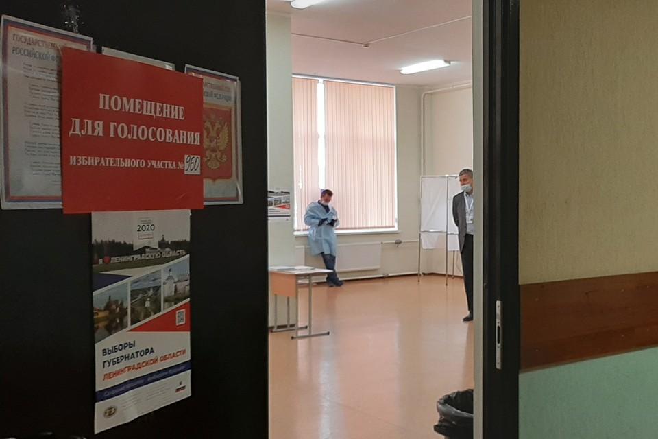 В Кудрово все три УИК разместились в одной большой школе.