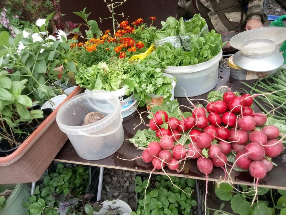На ярмарке можно будет купить свежие овощи и мед.