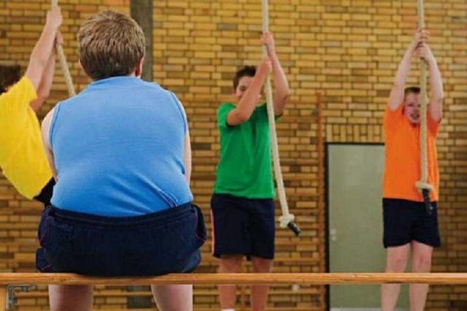 Уроки физкультуры сами по себе не могут компенсировать недостаток физической активности у несовершеннолетних. Фото: gamejulia.ru