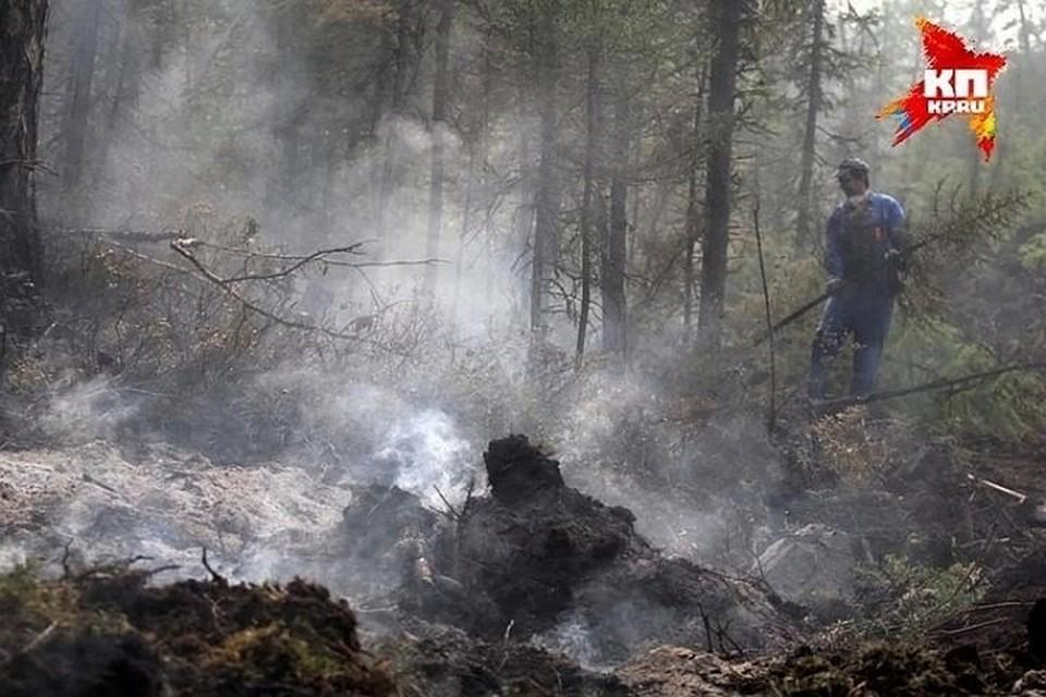 Спасатели рекомендуют воздержаться от поездок в лес на юго-востоке Башкирии