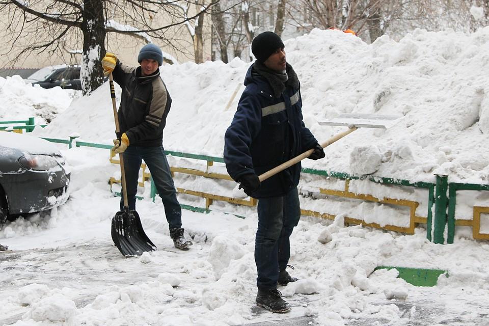 В целом зима будет мягкой и снежной с умеренными морозами