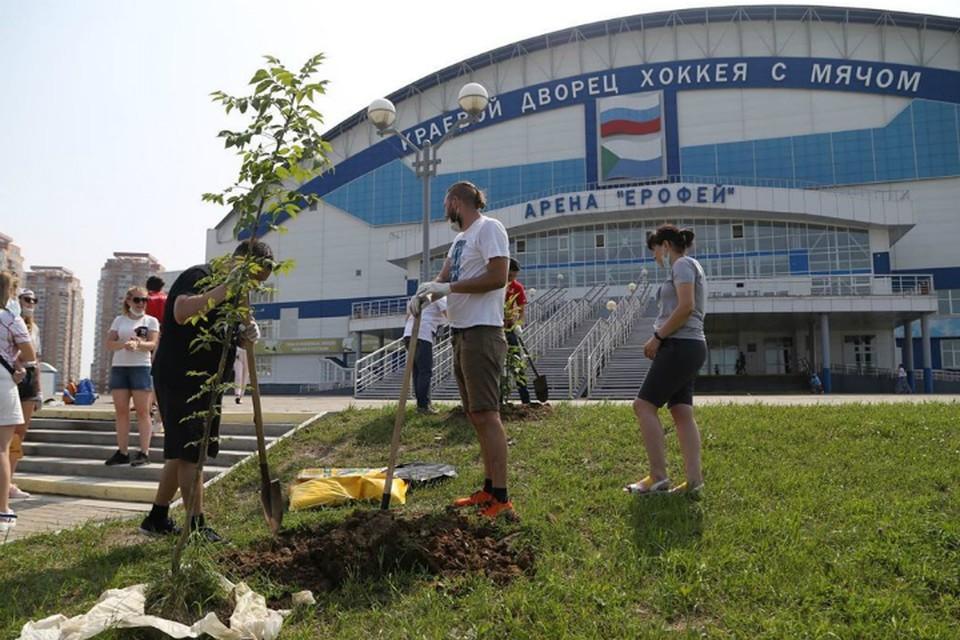 В Хабаровске перед субботником проведут спортивную разминку ФОТО: Арена «Ерофей»