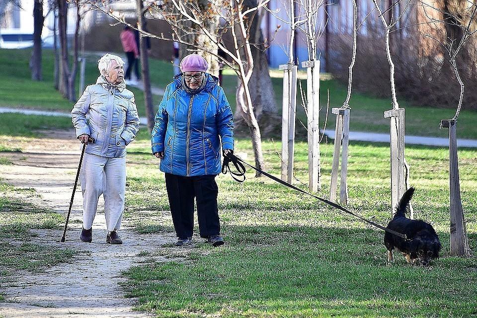 ПФР ответил на данные об угрозе приостановки выплат пенсий