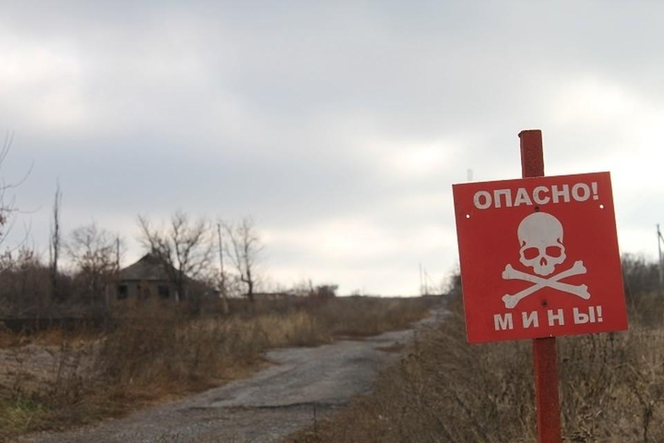 Ранее сообщалось, что украинские силовики также заминировали обширный участок поля возле села Водяное под Донецком