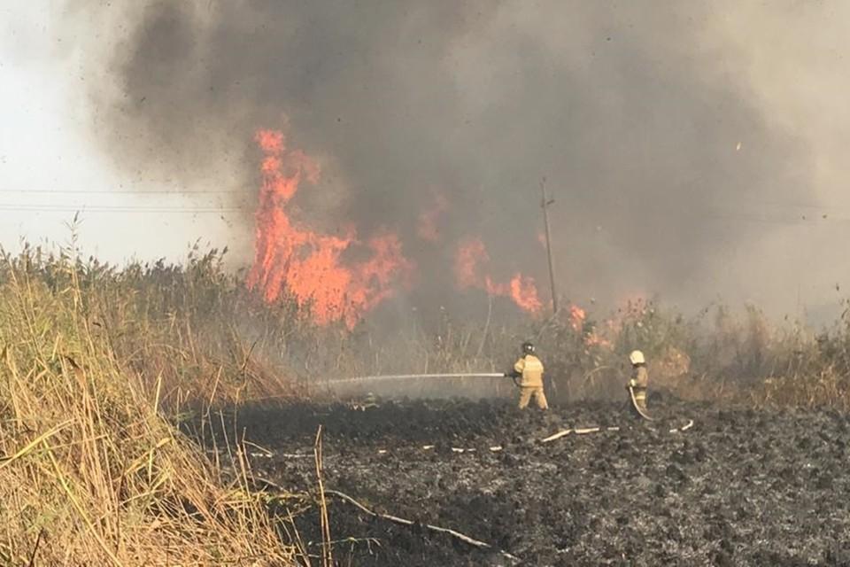 Сохраняется угроза распространения огня. Фото: ГУ МЧС по Ростовской области.