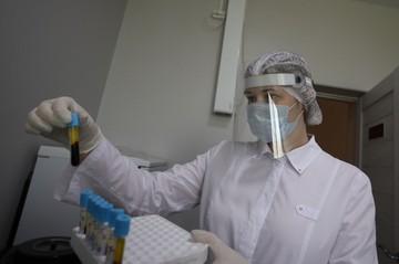 42 человека заболели коронавирусом в Курской области за сутки