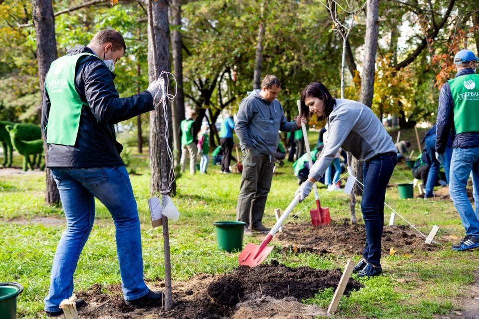 Экологическую акцию в рамках хабаровского общегородского субботника провел Сбербанк