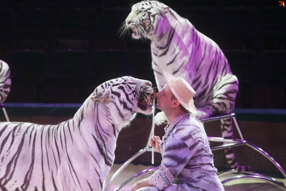 В середине октября цирк открывает сезон