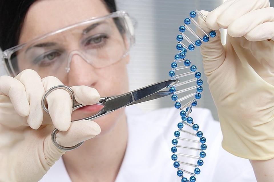 Исследовательницы создали так называемые генетические ножницы. Ими можно вырезать из молекулы ДНК отдельные участки и вставлять их в другие места