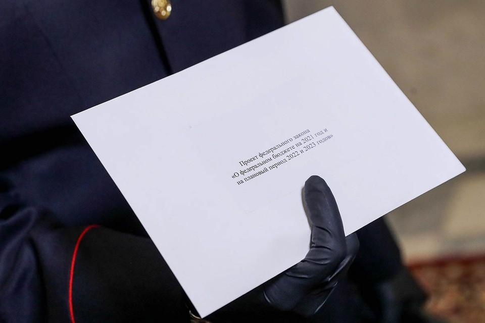 В «Единой России» рассказали, на что именно будут потрачены государственные деньги. Фото: Пресс-служба Госдумы РФ/ТАСС