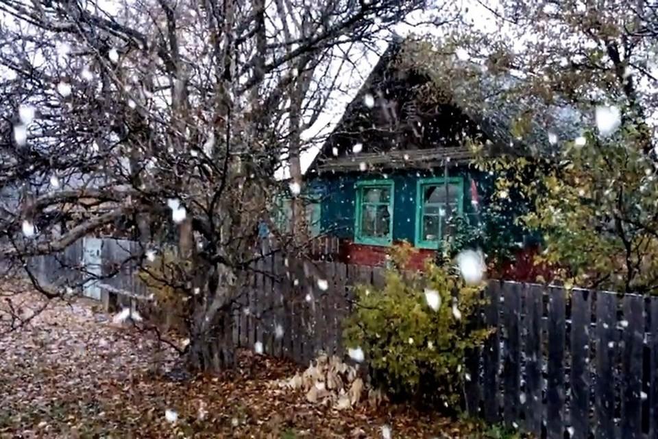Первый снег в Уборке. Фото: Владимир Кобзарь