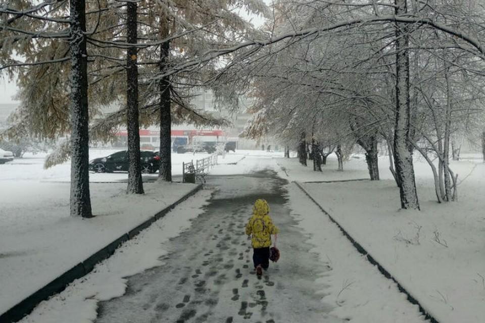 Первый снег в Нижнем Тагиле Фото: Марина Пятыгина