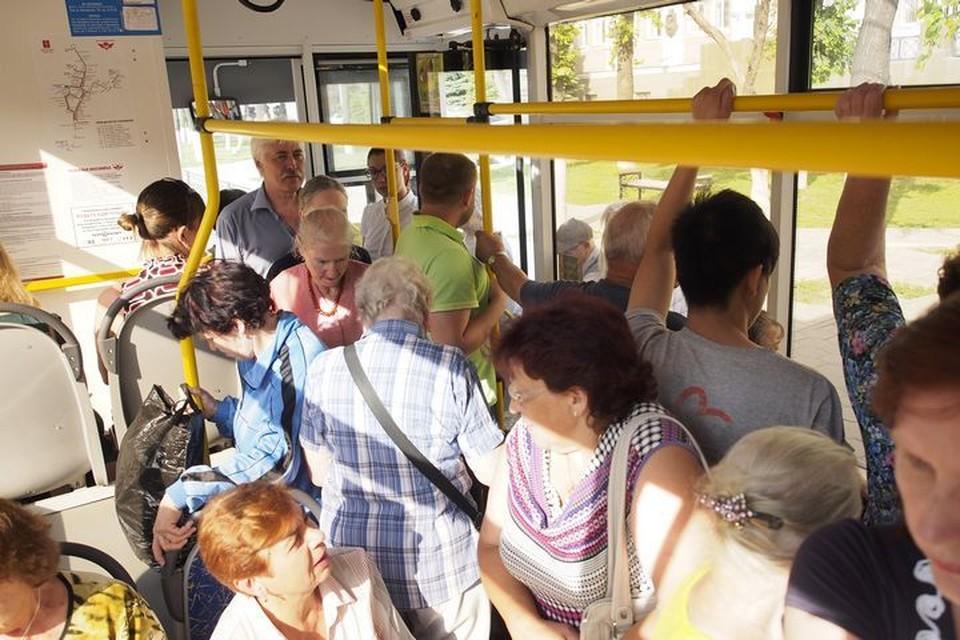 2 ноября в Туле введут новую транспортную карту