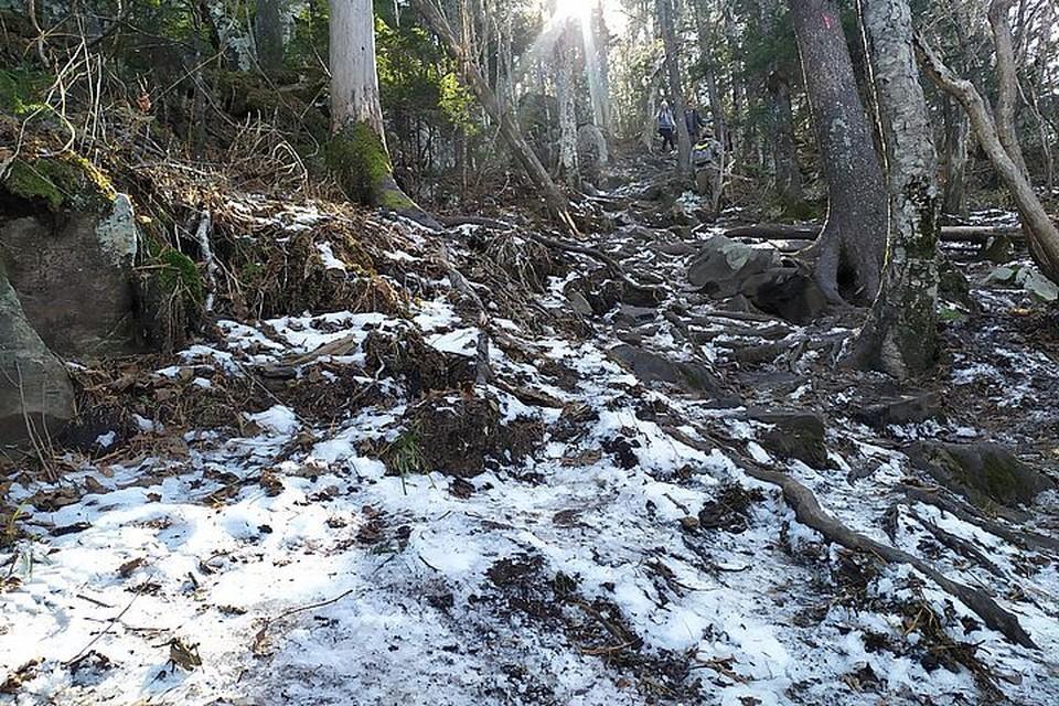 В северных районах Приморья возможен снег