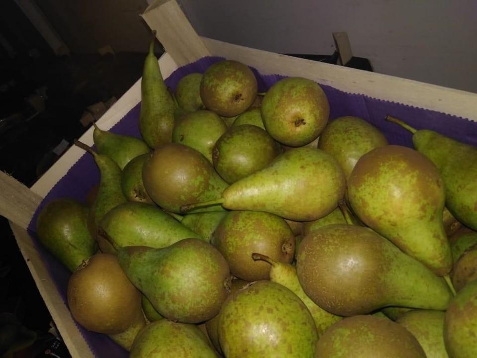 20 тонн груш задержали под Смоленском. Фото: Смоленской таможни.
