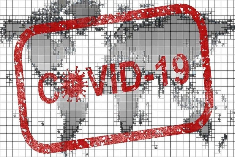 Коронавирус на Ямале. Последние новости на 31 октября 2020 года: регион занимает первое место по охвату населения тестированием на COVID-19