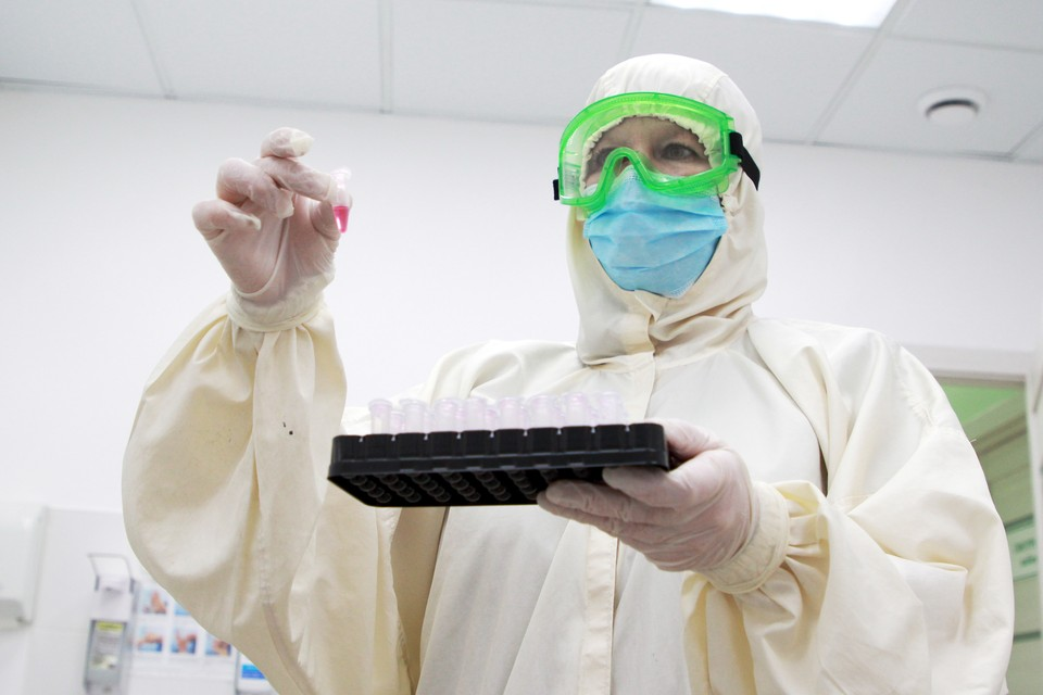 Коронавирус поможет победить лекарство из леса.